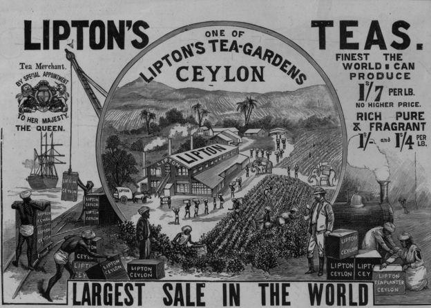 La Marca Personal de Thomas Lipton . Siempre a la búsqueda de nuevas oportunidades de negocio encontró el producto que sigue vinculado a la Marca Personal de Thomas Lipton, el TÉ. Hasta mediados del siglo XIX el té era un commodity cuyo precio era más caro que su peso en oro. Sin embargo fue a mediados del siglo XIX que su precio comenzó a caer y ser la bebida de las clases medias de la época Victoriana. Thomas Lipton vió nuevamente una oportunidad de negocio y viajó a Sri Lanka para comprar su primera plantación de té.