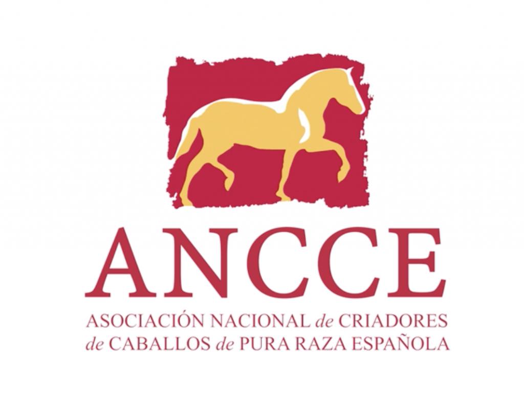 ANCCE - Asoc.Nac.de Criadores de Caballos de Pura Raza Espanola by Mary de Sojo Personal Branding